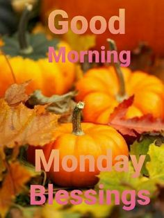 Good Morning Thursday, Monday Blessings, Harvest, Pumpkin, Vegetables, Kisses, Pumpkins, Blowing Kisses, Vegetable Recipes