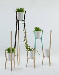 Planters - bring outside in!
