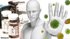 Сниженный иммунитет. Как распознать и что с этим делать?
