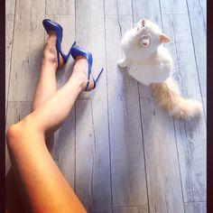 #MelitaToniolo Melita Toniolo: @lerre_shoes #cats #noah #me #you #him #family #love #life #home #house #us #monday