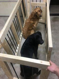 49 Ideas For Wooden Dog Crate Furniture Diy Dog Kennels And Crates, Wooden Dog Kennels, Diy Dog Kennel, Kennel Ideas, Pet Kennels, Wooden Dog Crate, Diy Dog Crate, Wood Dog, Wooden Crates