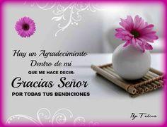α JESUS NUESTRO SALVADOR Ω: Hay un agradecimiento dentro de mí que me hace decir: Gracias Señor por todas tus bendiciones