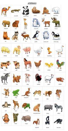 farm animals.tif copy.jpg (400×554) OT Pinterest Farms