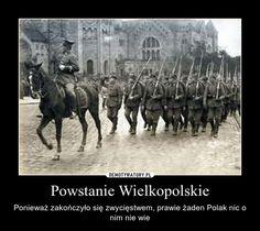 Demotywatory.pl - Powstanie Wielkopolskie Poland History, Horses, Animals, Historia, Animales, Animaux, Animal, Animais, Horse