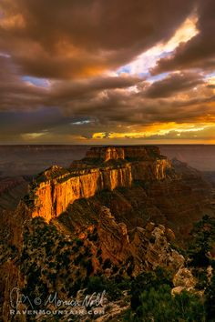 Available Light by Raven Mountain Images~ Raven Mountain, Grand Canyon National Park, Arizona*