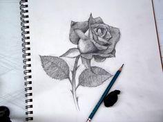 Como Dibujar Una Rosa Tutorial   Bricolaje y manualidades