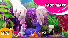 Baby Shark song - Join the sharks family to enjoy lots of mischievous activities, singing and dancing