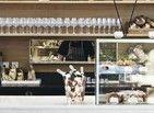 Antigo armazém abriga cafeteria no Soho