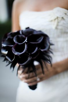 #Black calla lilies and #feathers