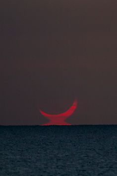 """e4rthy:  """"Solar Eclipse by Willoughby Owen  """""""
