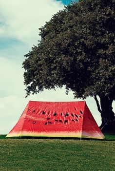 Watermelon Tent: Mouthwatering 2 person tent with the incredible design! - www.MyWonderList.com