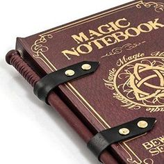 A magic notepad and wand pencil. Disguised to look like a spell book. A must for Harry Potter fans! Nb Affiliate link.