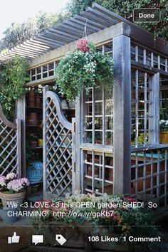 Fab potting shed!!!