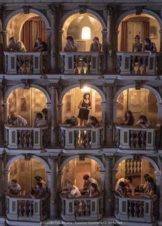 Festival Letteratura di Mantova