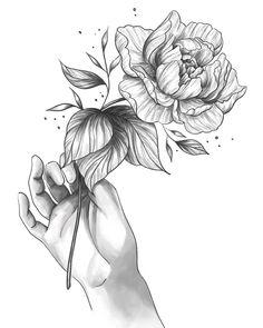 Illustrators On Instagram, Pretty Flowers, Hibiscus, Tattoos, Illustration, Beautiful Flowers, Tatuajes, Tattoo, Illustrations