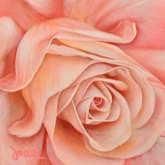 Blushing Rose by Joelle Goff – Harvest Gold Gallery