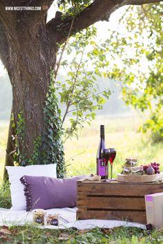 Herbstliches Picknick mit Ziegenkäse-Feigen-Sandwiches und Wein von den #spuernasen