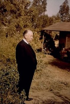 Pictures & Photos of Alfred Hitchcock - IMDb