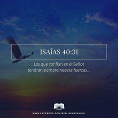 Pero los que confían en el Señor tendrán siempre nuevas fuerzas y podrán volar como las águilas; podrán correr sin cansarse y caminar sin fatigarse. - Isaías 40:31
