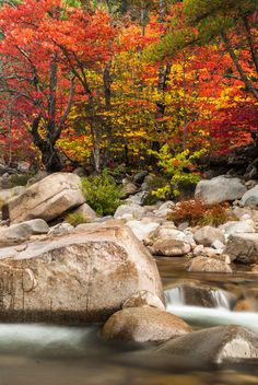 White Mountains by Chris D'Ardenne - Chronicles of a Love Affair with Nature Landscape Photography Tips, Beach Photography, Nature Photography, Autumn Scenery, Autumn Nature, Beautiful Nature Pictures, Amazing Nature, Oil Pastel Landscape, Landscape Silhouette
