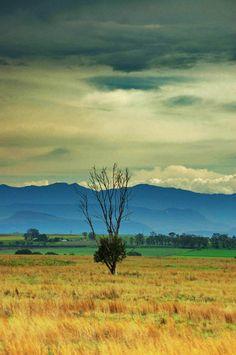 Qwa-Qwa, South Africa looking toward Lesotho