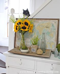 Late Summer Vignette with Sunflowers and Patches the Kitty