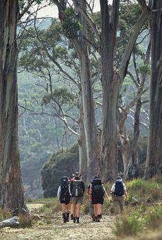 Maria Island Tasmania Australia. The whole island is a national park