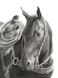 Waiting on You by Mary Ross Buchholz, Graphite & Charcoal, 19 x 14 Horse Pencil Drawing, Horse Drawings, Animal Drawings, Art Drawings, Pencil Art, Pencil Drawings, Cowgirl And Horse, Cowboy Art, Horse Love