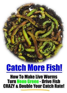 making homemade injection molds for soft plastic worm fishing, Soft Baits