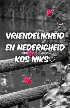 Afrikaans Quotes, Qoutes, Life Quotes, Humor, Sayings, Van, Board, Quotations, Quotes About Life