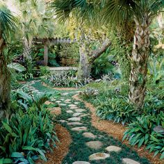 We asked Miami landscape architect Raymond Jungles, who's known for this lush, low-fuss gardens, to share his secrets for turning any yard into a tropical retreat.
