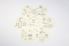 BUSY BEES - BACHELOR THESIS by VANESSA SCHNURRE, via Behance