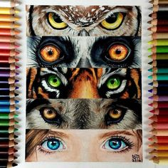 Repost from @sydney_nielsen_art Wild eyes Done with Prismacolor pencils and white gel pen Inspired by an @mnzoo advertisement What's your favorite animal? I like peacocks and leopards #drawing #art #prismacolor #animals #colorful #mnzoo #love #eyes #nature #tiger #instagood #artist #girl #like4like #artupdates #painting #Art_Spotlight #me #cosmosofart #artmg03 #like #artsdreamss #cute #youngartist #artistic_empire #follow #mizu_art #arrtposts #wwf FOLLOW @zbynekkysela & TAG your ar...