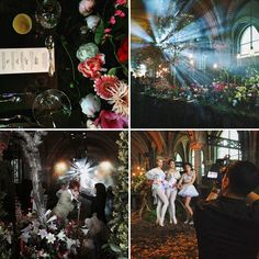 Many of you might be wondering why we headed to Amsterdam over the past week.. Well, it was for a very special and flowery event! Flowers like you've never seen them before.. We were invited to attend the launch of...