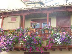 Balcones canarios¡