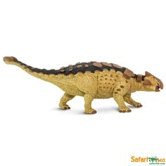 Style; Triceratops Ankylosaur & More Fashionable Lot Of 15 Dinosaurs Toy Plastic Model Dimetrodon In