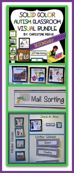 Solid Color Autism Classroom Visual Bundle This set of visuals includes individual schedules, group schedules, check-in visuals, cueing visuals, school jobs, and classroom rules all designed specifically for middle and high school students in special education. $10
