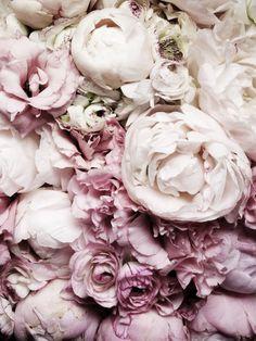 #piones #easter #flowers