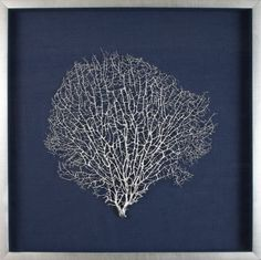 Large natural coral sea fan finished in silver lacquer, floated on navy linen and finished in a antiqued silver frame