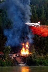 water bombing forest fires