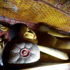 Travel guide to Sri Lanka – CITIZEN ON EARTH