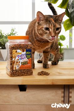 Because everything is better with a spoonful of gravy on top, you can satisfy your kitty's cravings for meaty flavor with Friskies Party Mix Gravylicious Cat Treats. These tasty morsels pack a delicious flavor that's sure to impress even the picky felines. These low-calorie treats are the perfect anytime snack, and they're resealable package keeps them fresh and crunchy. Plus, these fun-shaped treats are great for tossing so your kitty can work for it, and they're easy to grab with their…