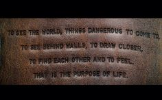 Purpose of life... From The Secret Life of Walter Mitty