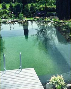 classic design natural pool. love this aesthetic