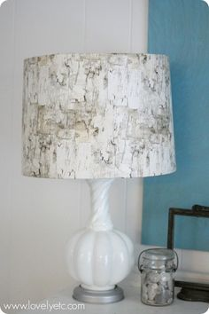 birch lampshade made by wrapping birch bark wrapping paper around an old lampshade and taped in place