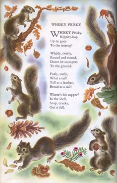 "Childcraft - ""Whisky Frisky"" I love squirrels! Nursery Rhymes Poems, Squirrel Art, Pomes, Kids Poems, Chipmunks, Vintage Children, Childhood Memories, Childrens Books, Fairy Tales"