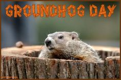 Groundhog Day 2014 eCards wishes Quotes Messages when is Groundhog Day ...