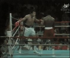 Facts about Muhammad Ali. Muhammad Ali reportedly went two months without sex before a big fight, claiming it made him unbeatable in the ring. Gifs 3d, Boxe Fight, Sting Like A Bee, Float Like A Butterfly, Mike Tyson, Muay Thai, Best Funny Pictures, Martial Arts, All About Time