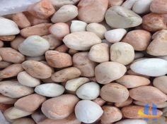 Rosa Corallo Stuffed Mushrooms, Beans, Potatoes, Vegetables, Food, Elegant Home Decor, Meal, Beans Recipes, Potato
