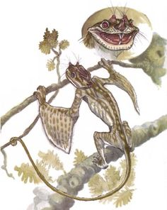 terryl whitlatch creatures - Google Search